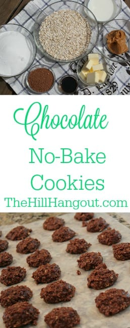 Chocolate No Bake Cookies from TheHillHangout.com