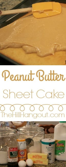 Peanut Butter Sheet Cake from TheHillHangout.com