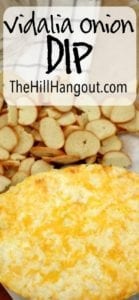 Vidalia Onion Dip from TheHillHangout.com