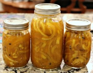 Pickled Onions from TheHillHangout.com